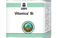 Vitanica Si