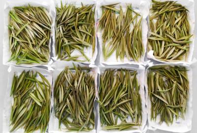 Análisis foliar en olivar