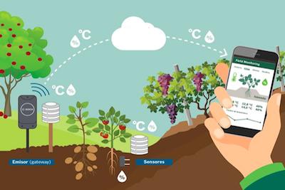 agricultura de precisión - solución de monitorización